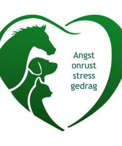 Angst, onrust, stress, gedrag